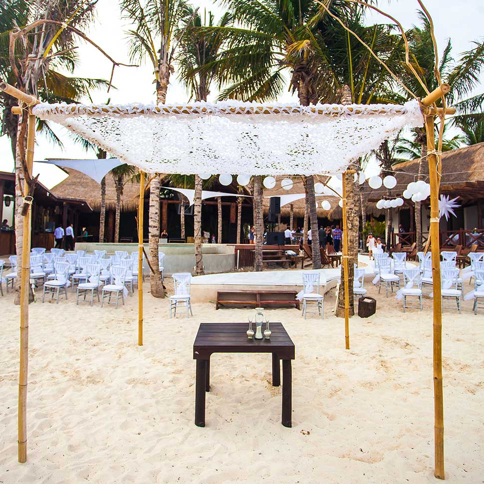 Blue Parrot Weddings Services